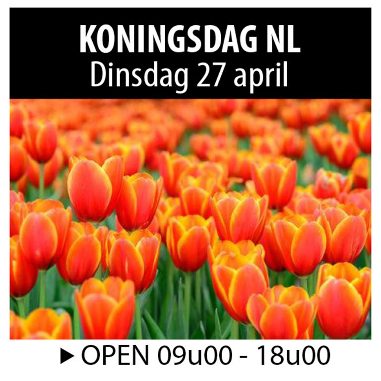 Koningsdag NL