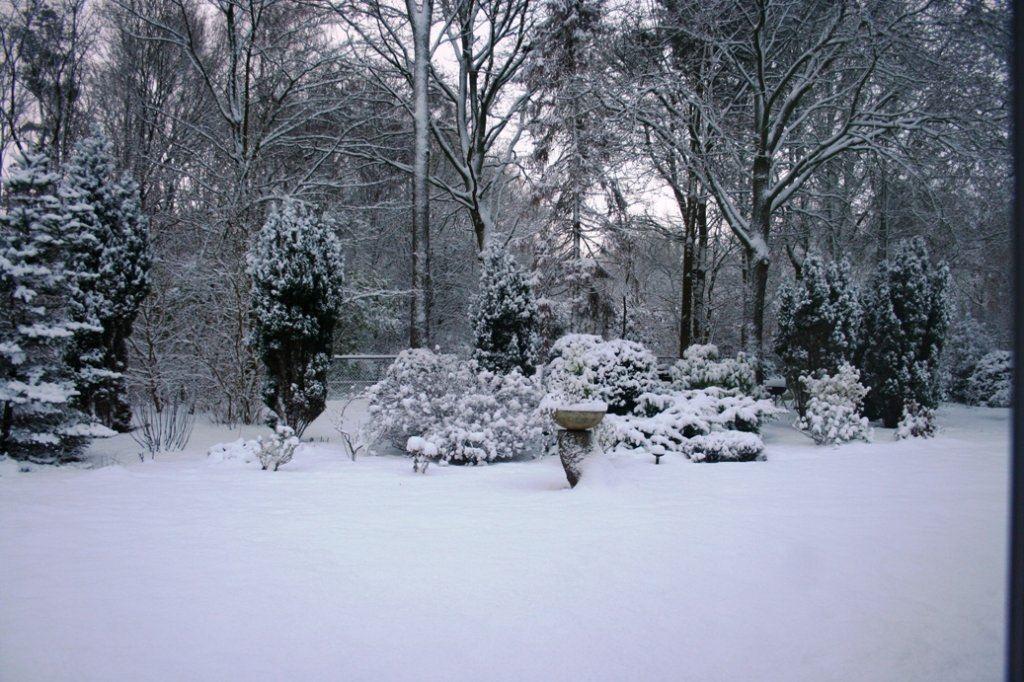 Is sneeuw nu goed of niet?