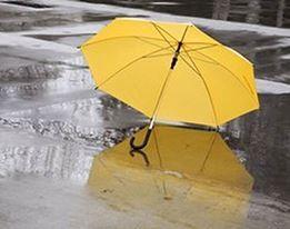 Regenbescherming & Paraplu's
