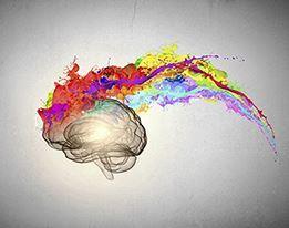 Tekenen & Creativiteit