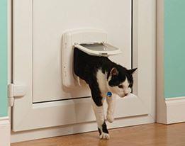 Kattenbak & Luiken