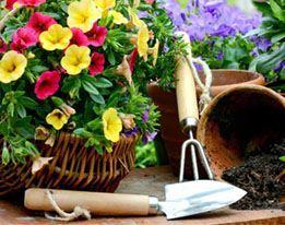 Planten- & Tuinverzorging
