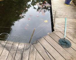 Vissenbescherming